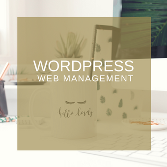 WordPress Website Management Services